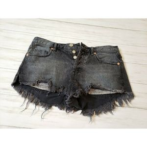 We the Free People  Denim Jean Shorts Button Fly